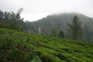 Coonoor Land with Water Falls View