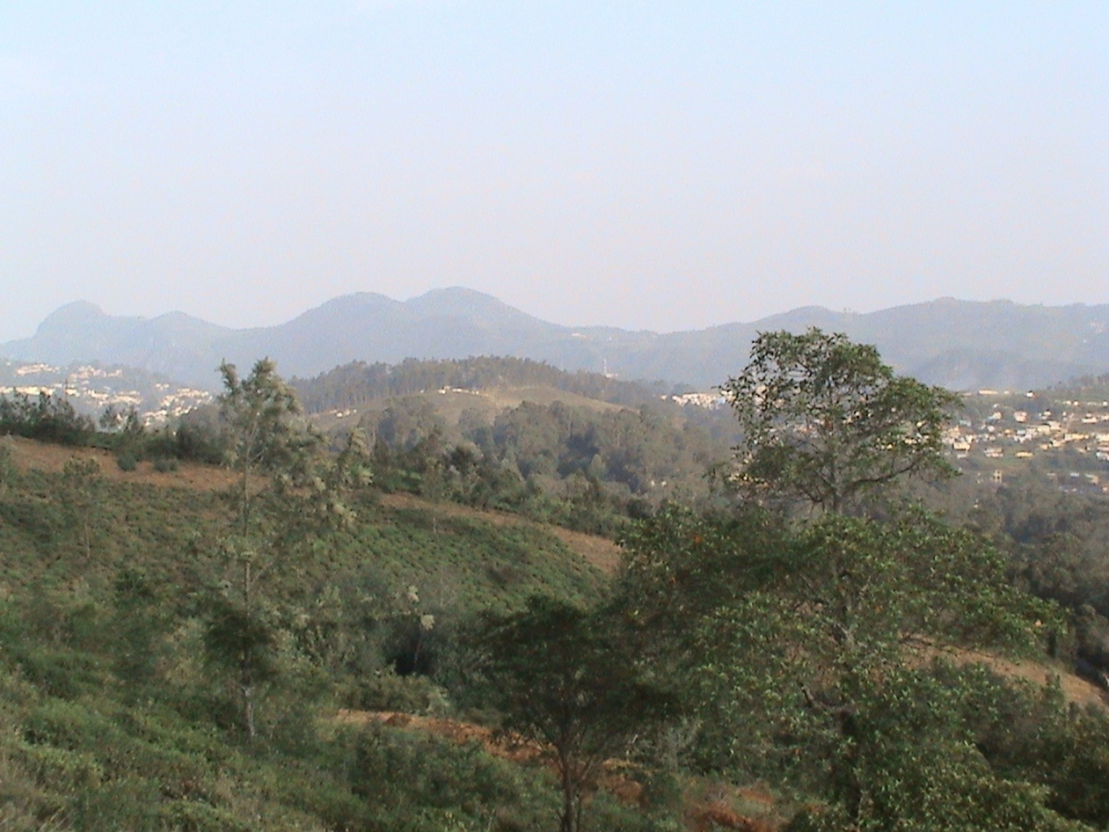 Aruvankadu Land for Sale. Ooty to Coonoor Main Road with Hill View (2/6)