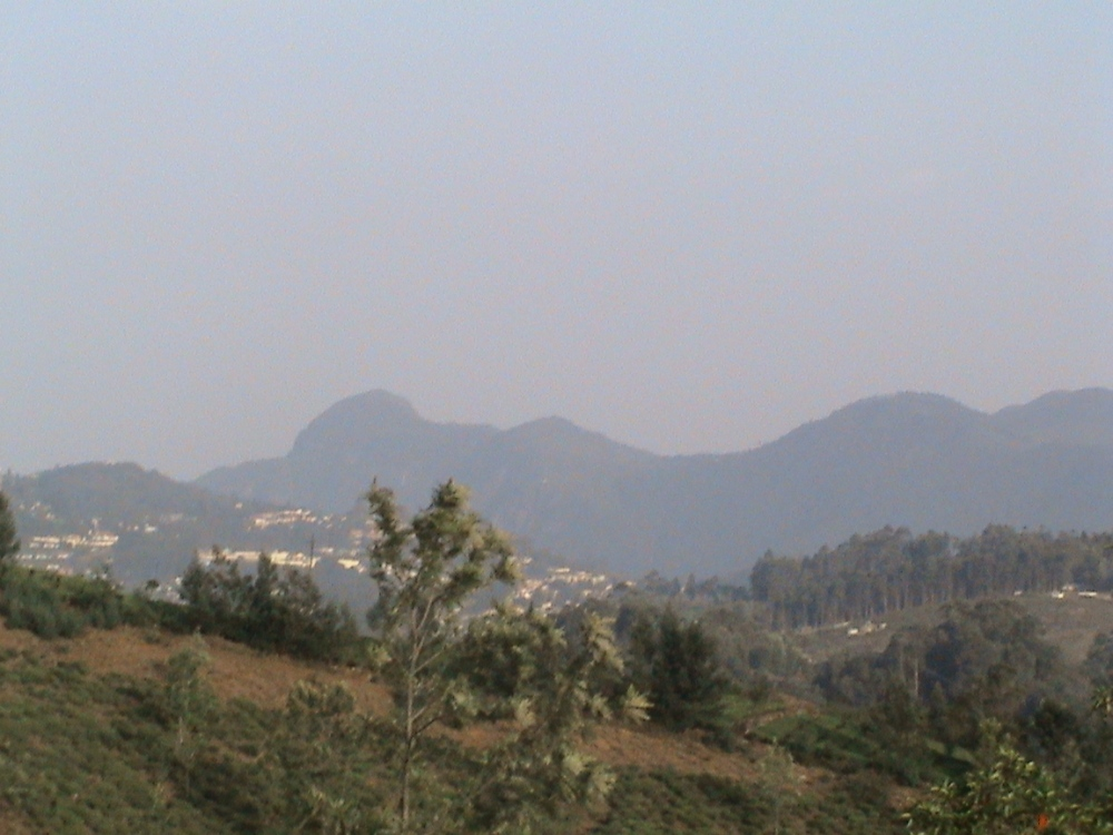 Aruvankadu Land for Sale. Ooty to Coonoor Main Road with Hill View (6/6)