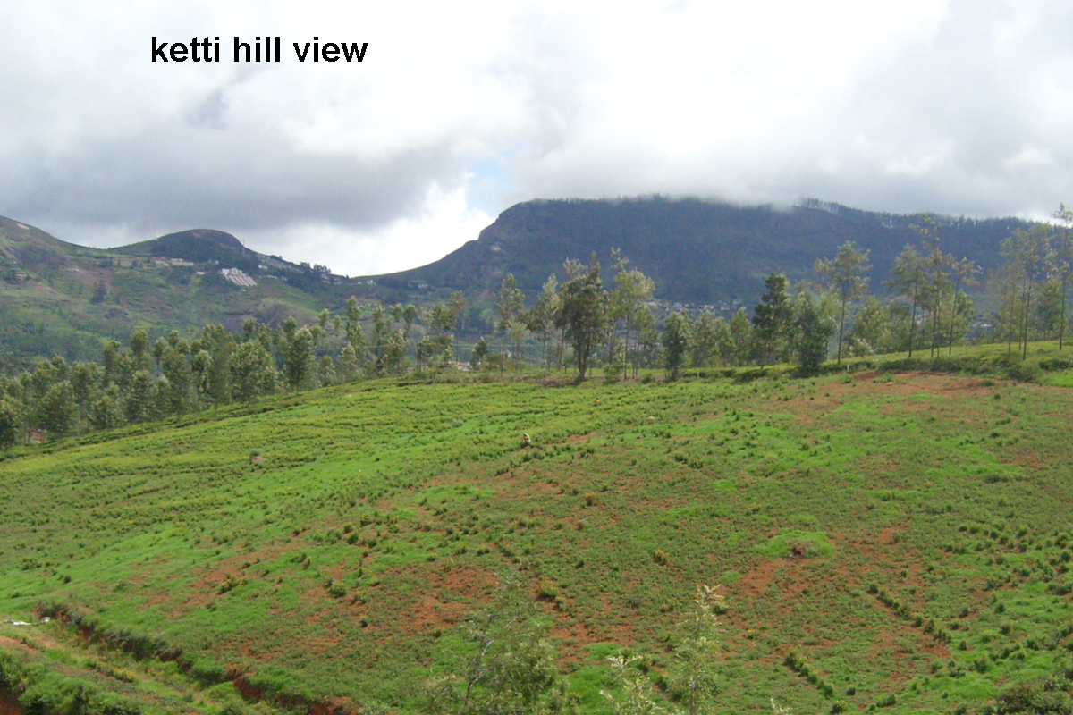 Available plots for sale in ketti the nilgiris ooty real estate properties plots land for - Houses for small plots of land ...