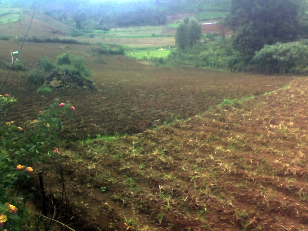 Land available for sale 25kms from ooty (6/6)