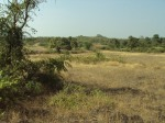 Goa land for sale